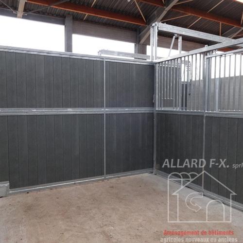 Allard F-X Sprl -  Chevaux